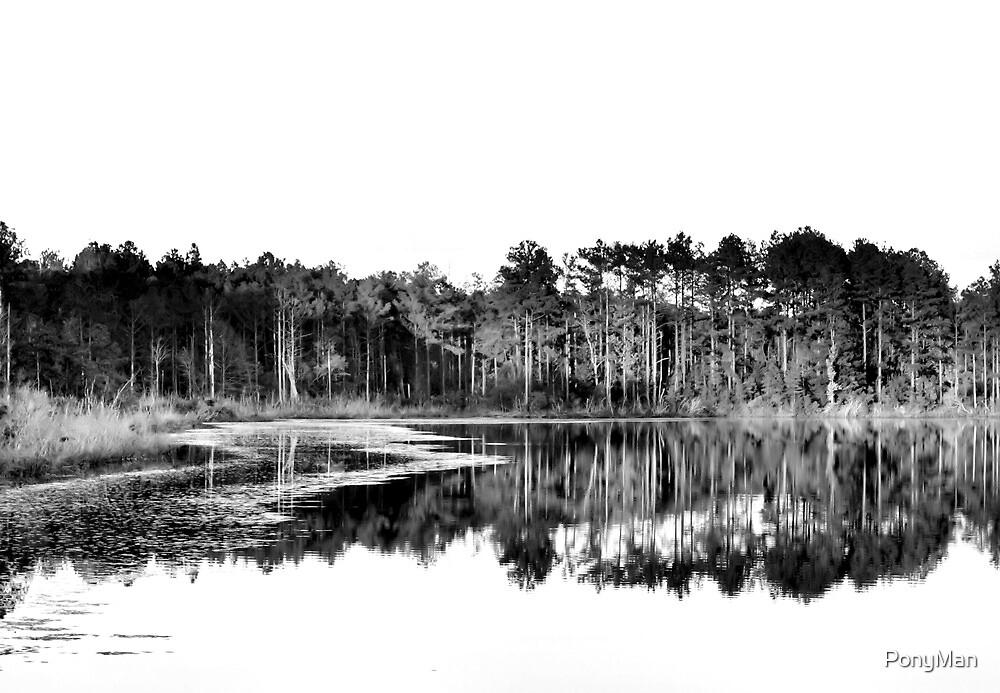 Waters Edge by PonyMan
