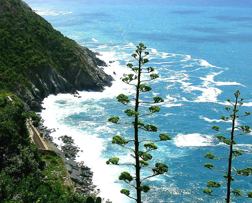 green trees along coast by Gary Mannix