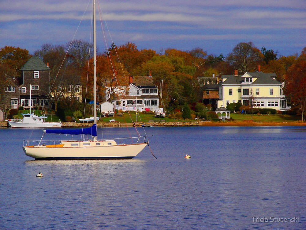 Waiting for a sail by Tricia Stucenski