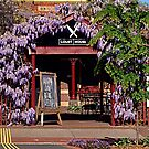 Wisteria, Warragul Courthouse Cafe by Bev Pascoe