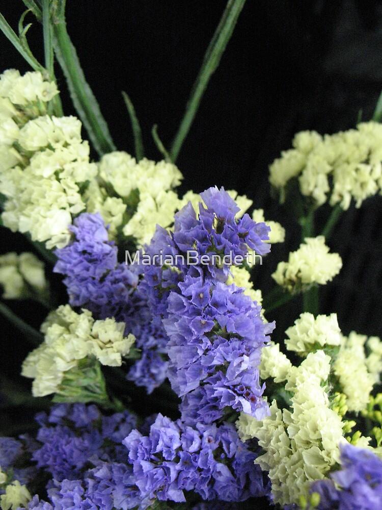 Floral Latticework by MarianBendeth