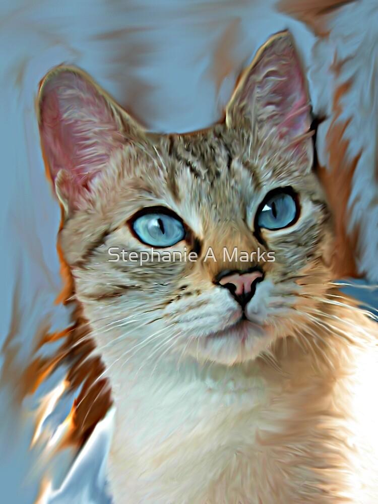 Cat Portrait by Stephanie A Marks