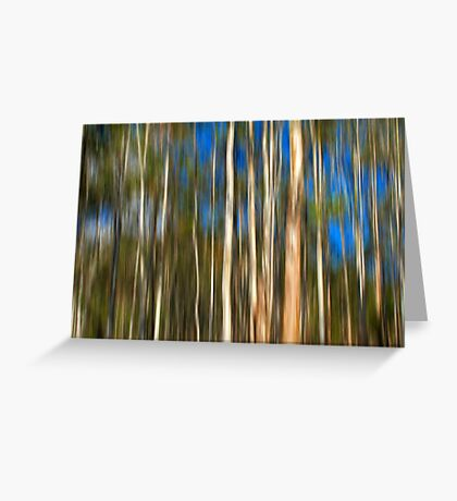 Among The Gum Trees Greeting Card