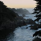 View of Point Lobos by Ellen Cotton