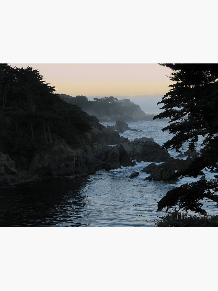 View of Point Lobos by ellcot