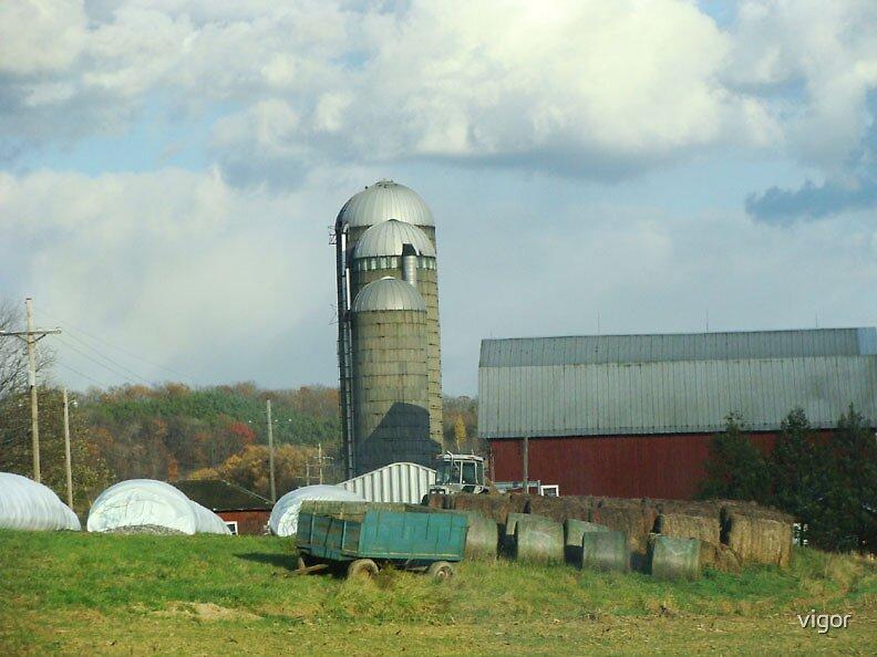 Down on the Farm by vigor
