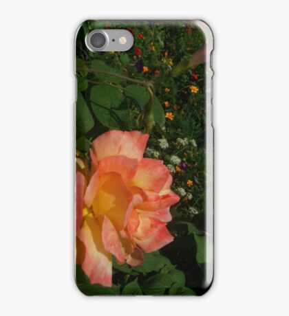 Endless Color iPhone Case/Skin