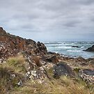 Couta Rocks III by Clare Colins