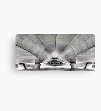 Hovering heavyweight II Canvas Print