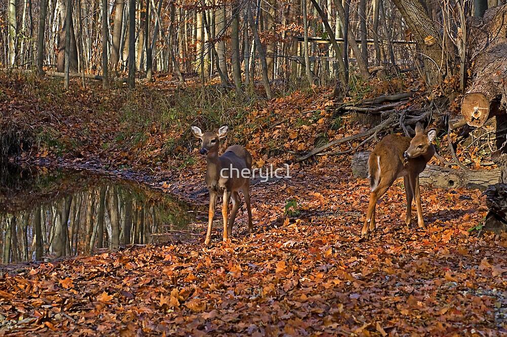 My Bambie friends by cherylc1