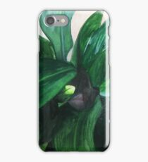 Aspidistra (From Above) iPhone Case/Skin