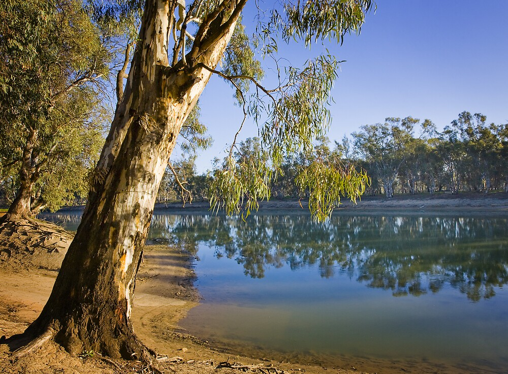 Murray River Swan Hill by Lynn and Lee Deamer