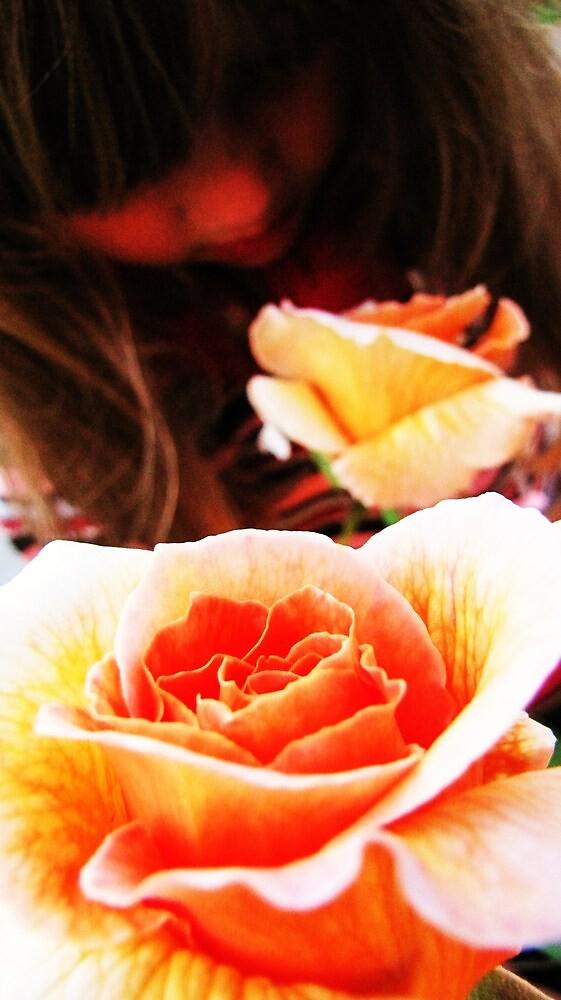A rose by vicintaz