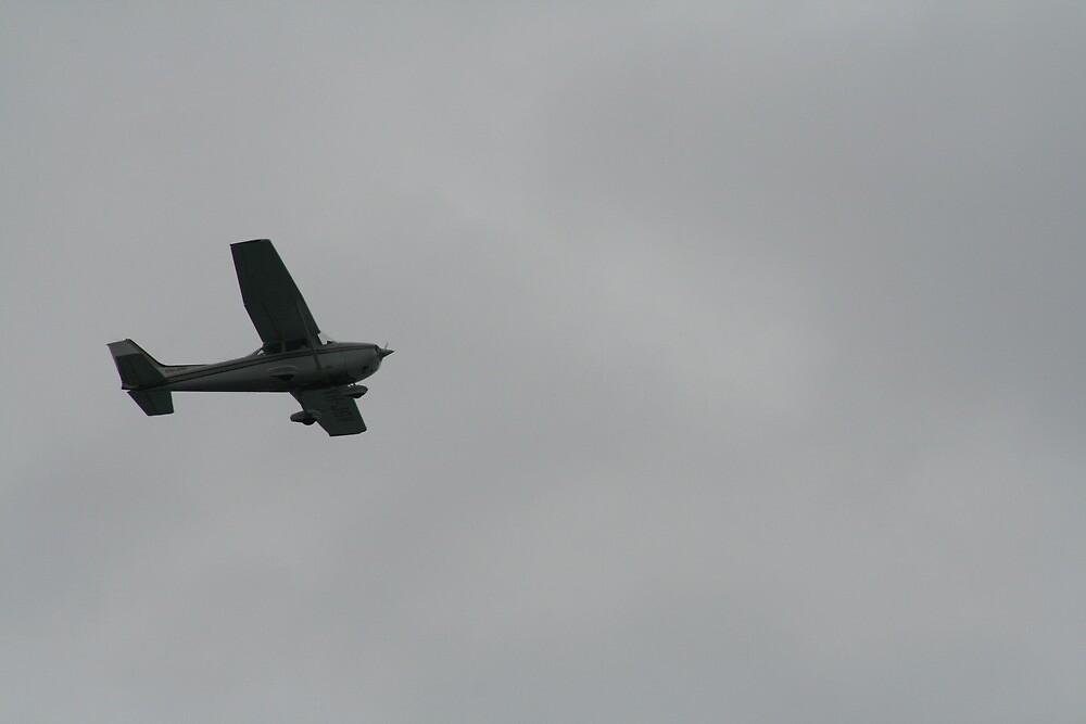 Flight by jturner