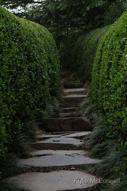 the garden path by Kylie McConnell