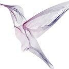 Magical humming bird by Magda Hanak
