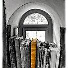 Heavy Reading In Sustag II by Al Bourassa