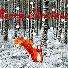 Squirrel in Snow Christmas Card  by EuniceWilkie