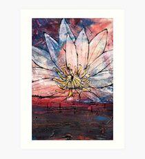 Crimson Lily Art Print