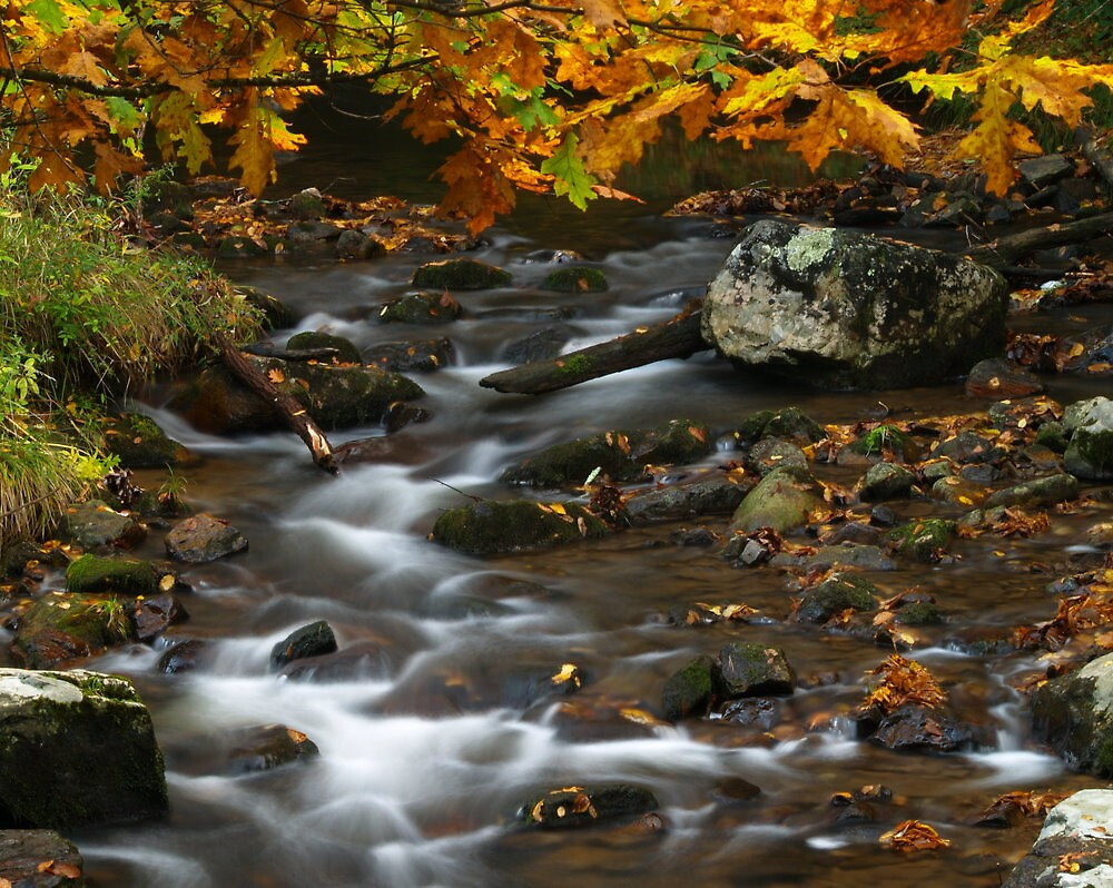 Water in autumn....creek junction by drop-thumb