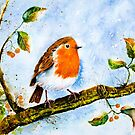 A ROBIN'S SONG by Carrie McKenzie