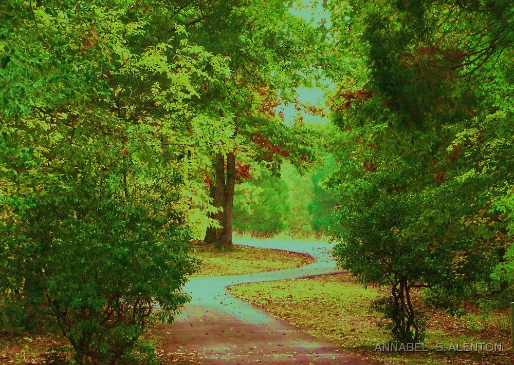 a long and winding road by ANNABEL   S. ALENTON