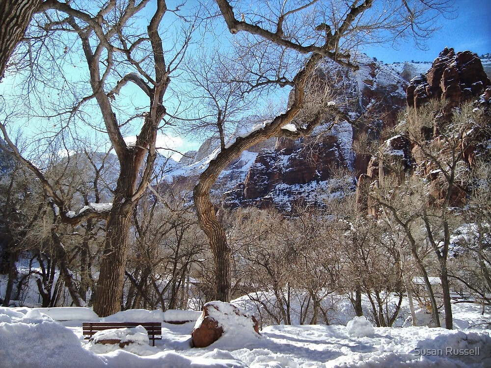 Snow Covered Bench at Zion National Park by Susan Russell