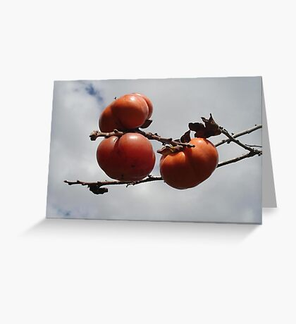Japanese Persimmons Greeting Card