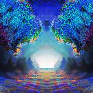 Forest Vibrations by Shmuel Bell
