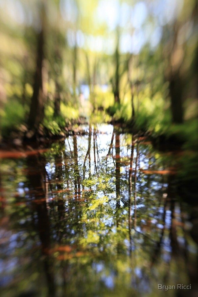 Red Reflection - Grafton Lake  by Bryan Ricci