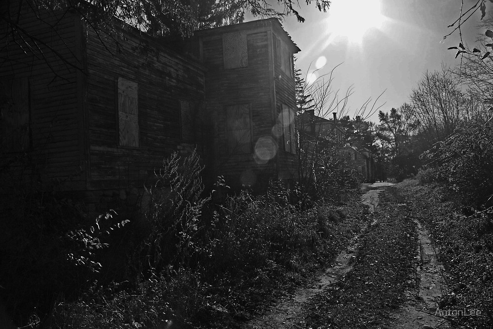 the back road by AntonLee