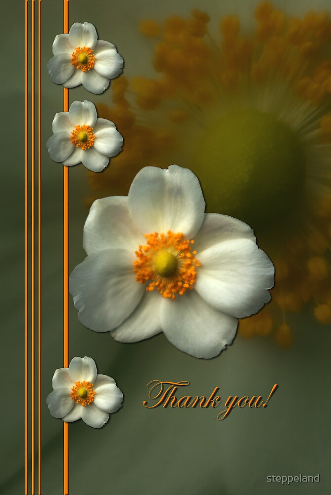 Inner beauty - thank you card by steppeland