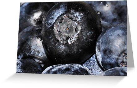 Blueberries For You by Lana D'Attilio