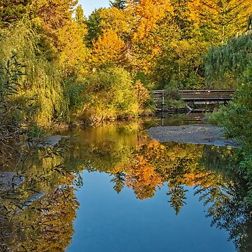 View from a Bridge in Edwards Gardens, Toronto, Canada by gerdagrice