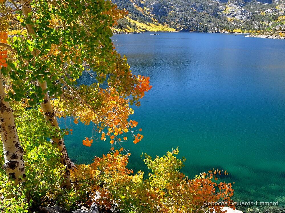 Aspens, Lake Sabrina by Rebecca SowardsEmmerd