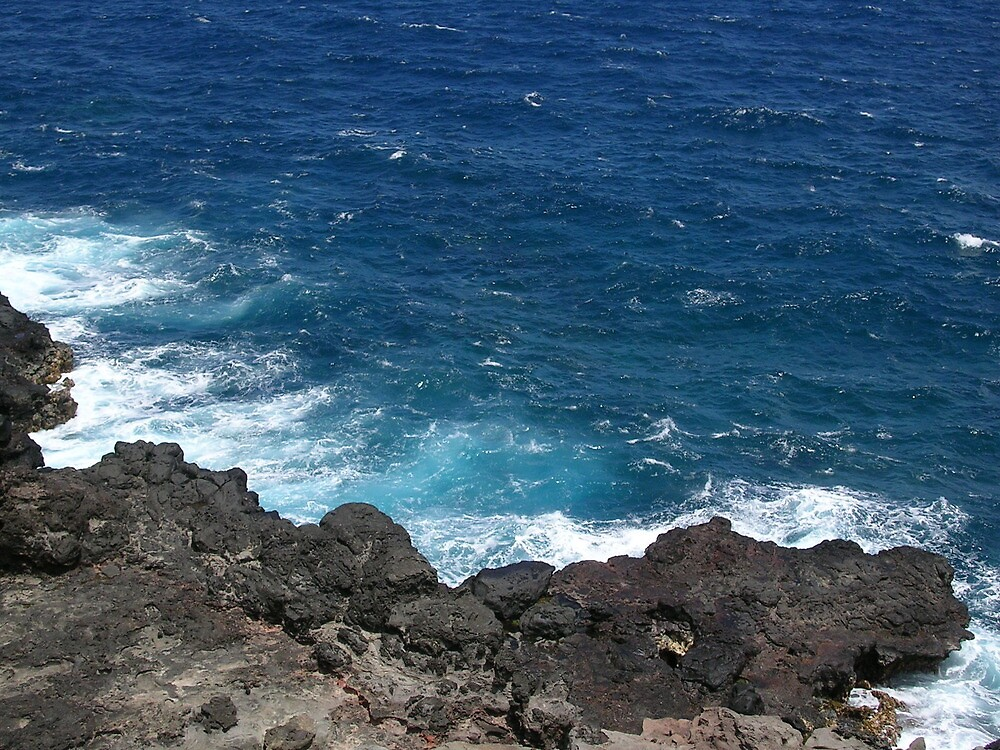 Maui the Place to Be by Dixie Duncan