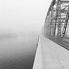foggy bridge by Teresa Young