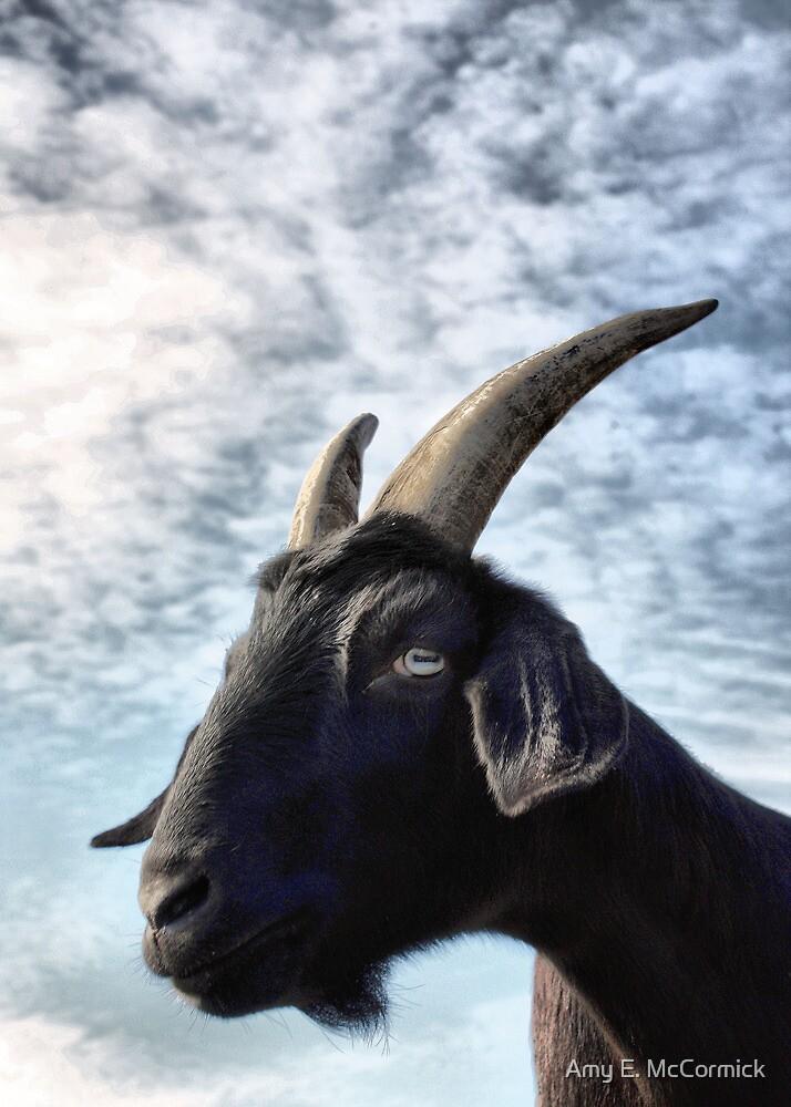 Blue Eyed Goat by Amy E. McCormick