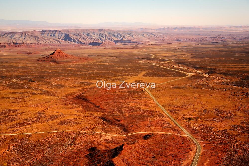 Soaring over Desert by Olga Zvereva