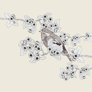 Little Bird by samclaire