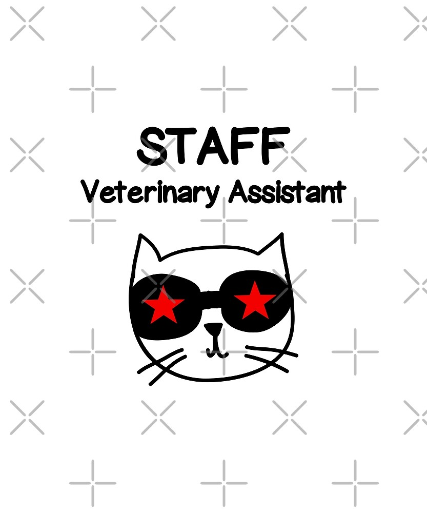 Veterinary Assistant Staff Employee Cat with Stars Color by TinyStarAmerica
