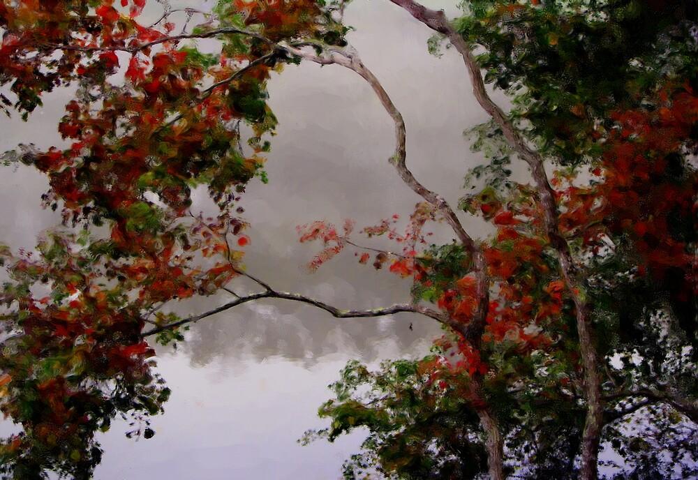 Fall Fog by DottieDees