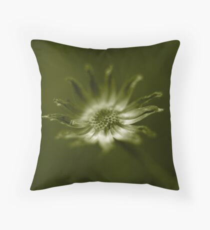 end of daisy days Throw Pillow