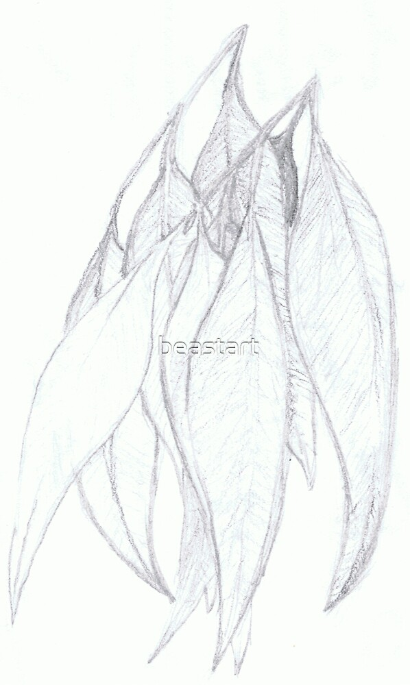 simple gumleaves- pencil by beastart