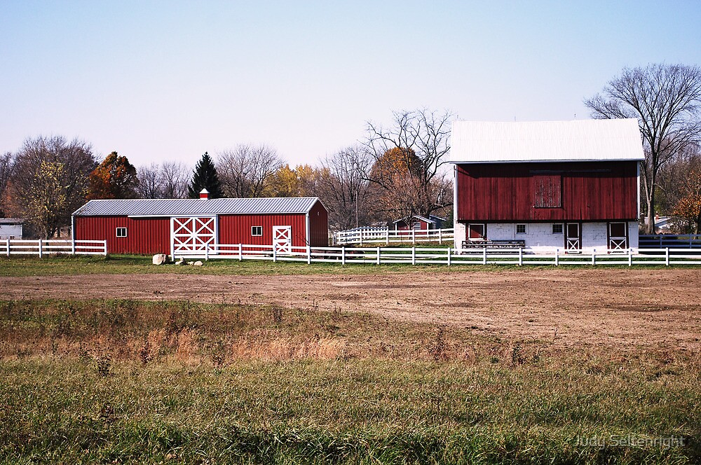 Ironwood Barn by Judy Seltenright