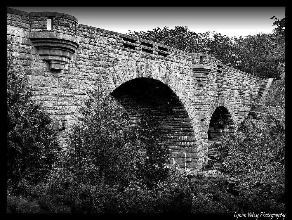 Duck Brook Bridge by Lyana Lynn