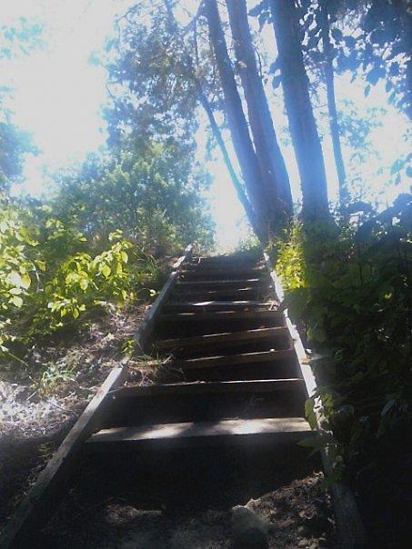 Hidden Paths by belleamour