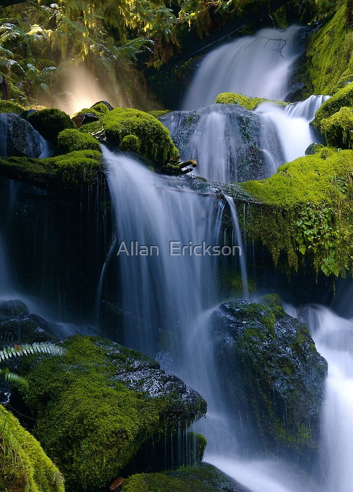 Whitehead Creek #5 by Allan  Erickson