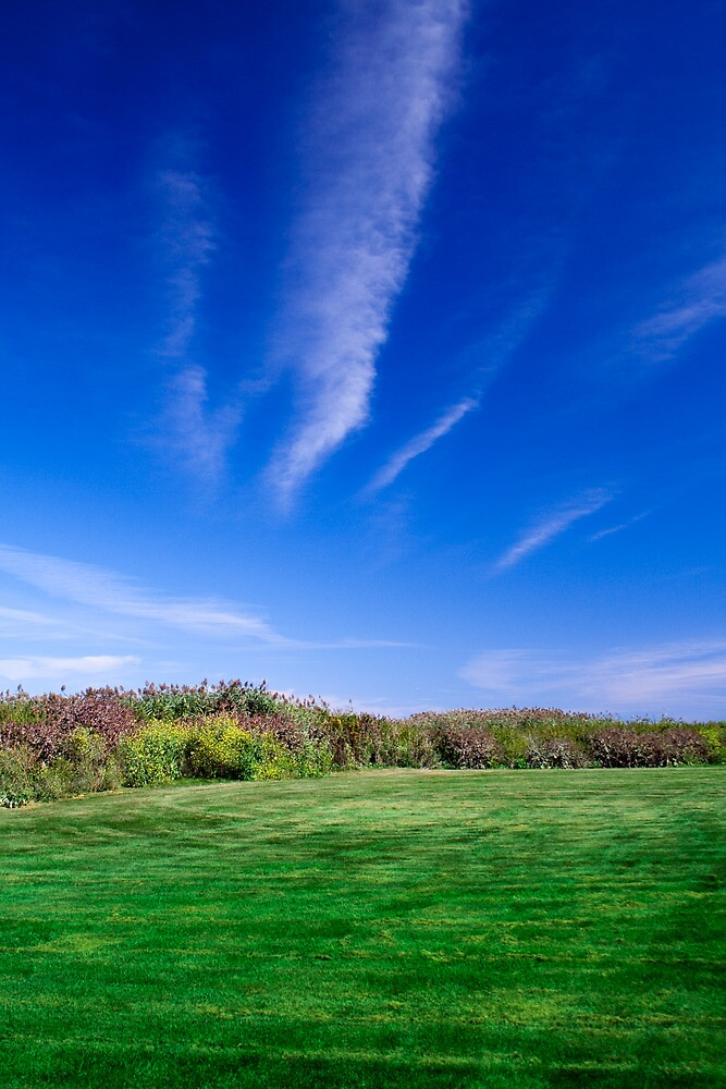Blue Sky - Green Grass by Mike Smith