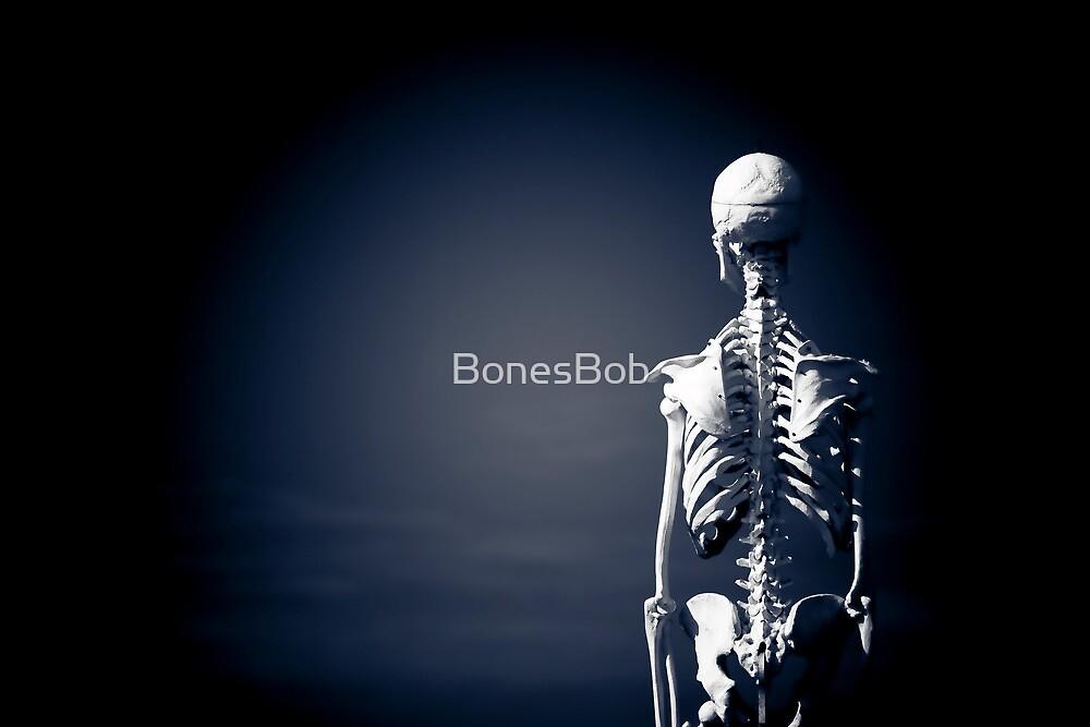 Facing the Void by BonesBob